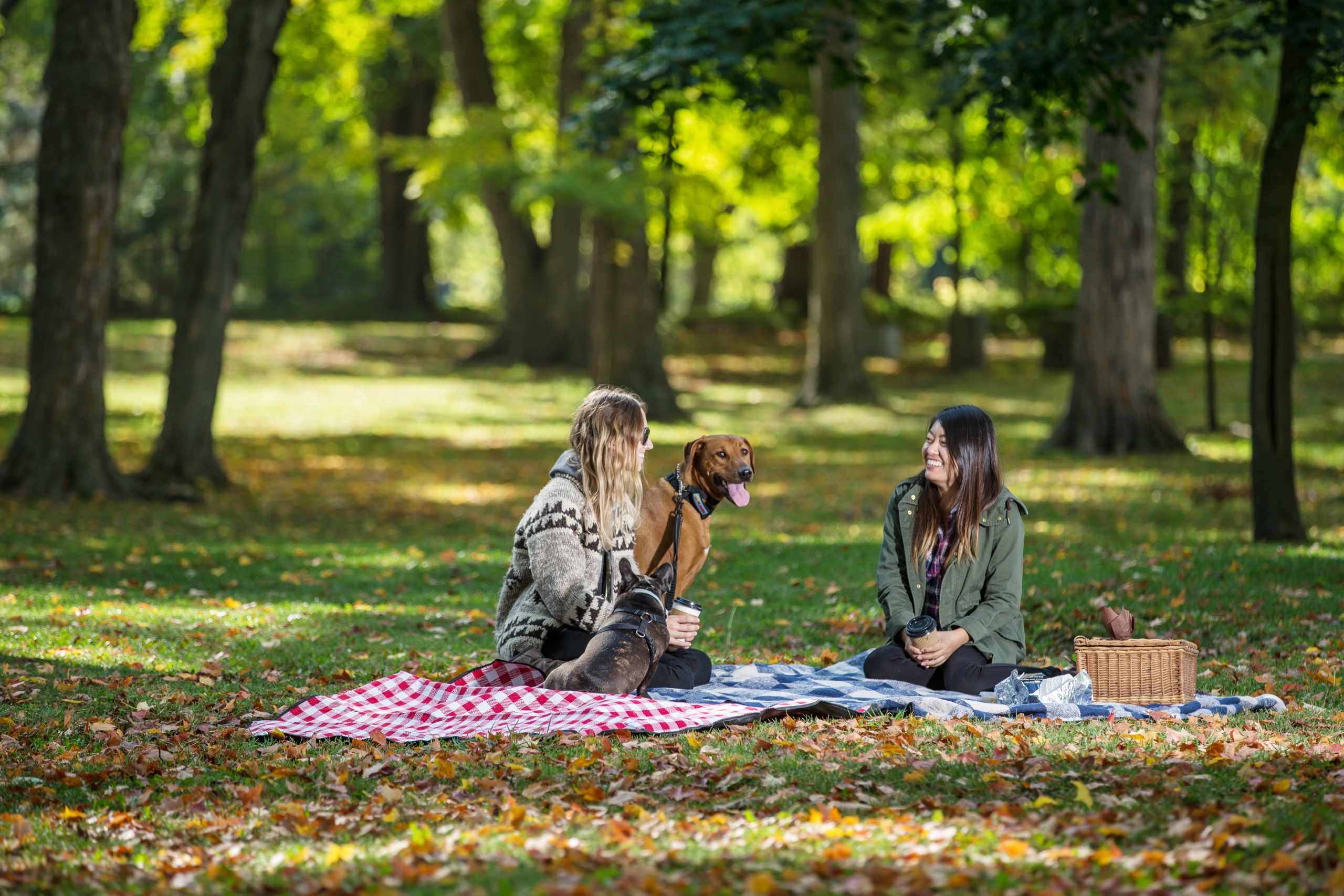 Two women and a dog picnicking at a Conservation Area