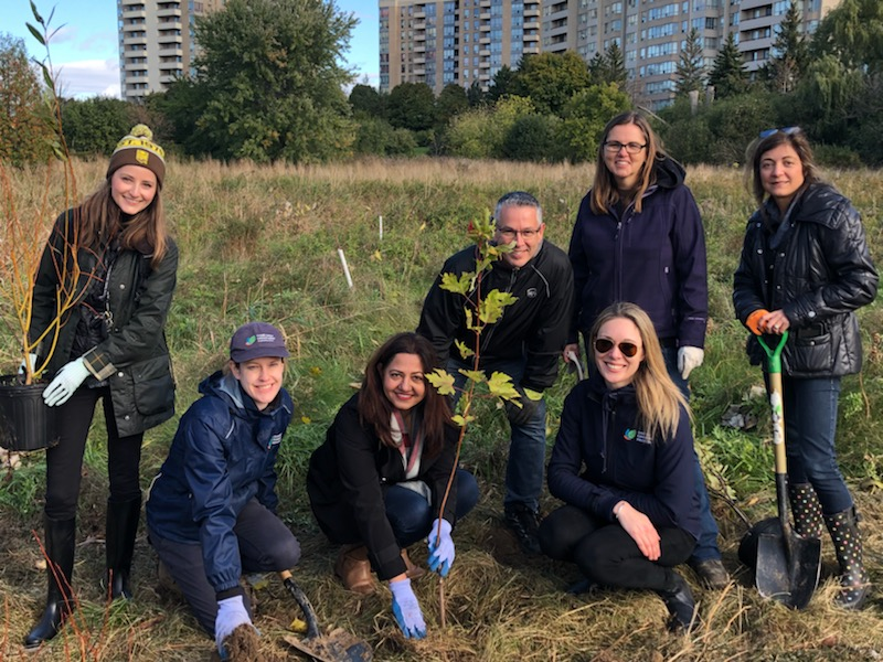 UPS employees taking part in a volunteer tree planting with CVC