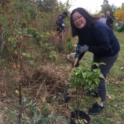 DHL employee planting a tree at a corporate volunteer tree planting