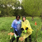 Rogers employees at a volunteer corporate tree planting